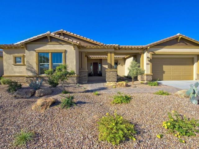 12014 S 181 St Drive, Goodyear, AZ 85338 (MLS #5563962) :: Sibbach Team - Realty One Group