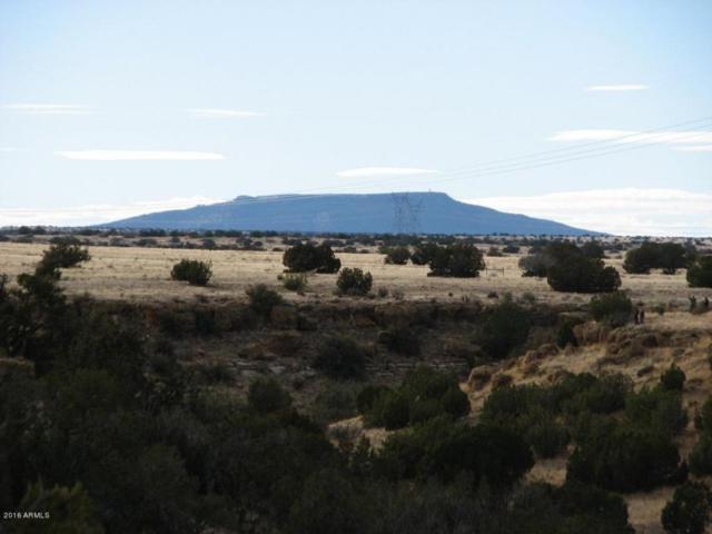 5776 Potatoe Pass Ccr Lot 119 Road, Winslow, AZ 86047 (MLS #5564131) :: Yost Realty Group at RE/MAX Casa Grande