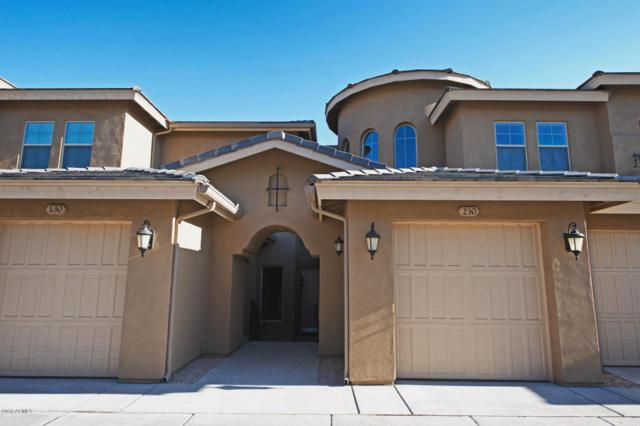 15550 S 5TH Avenue #230, Phoenix, AZ 85045 (MLS #5565423) :: Lux Home Group at  Keller Williams Realty Phoenix