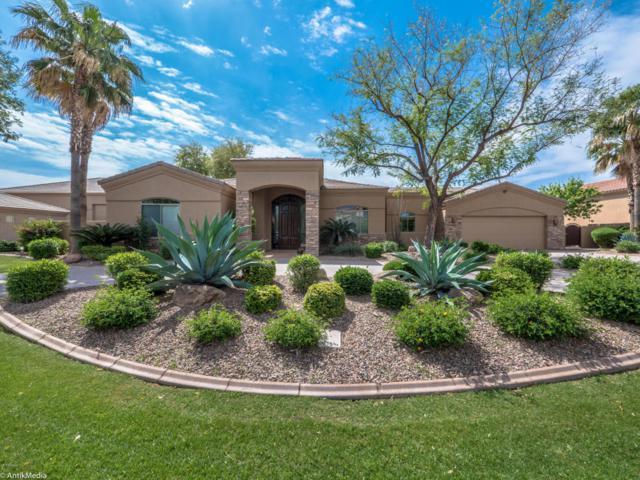 4293 W Kitty Hawk, Chandler, AZ 85226 (MLS #5588730) :: Revelation Real Estate