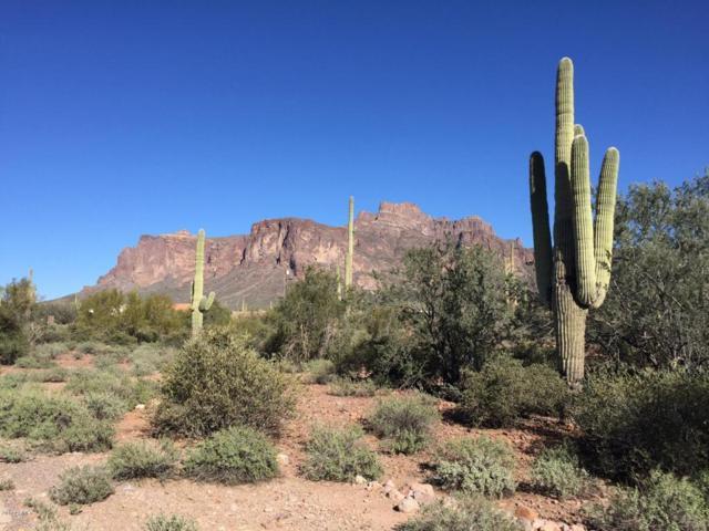 577 N Moon Road, Apache Junction, AZ 85119 (MLS #5592042) :: The Kenny Klaus Team