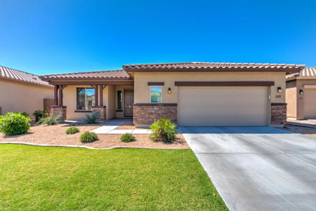 1315 E Sarona Street, San Tan Valley, AZ 85143 (MLS #5596215) :: Santizo Realty Group