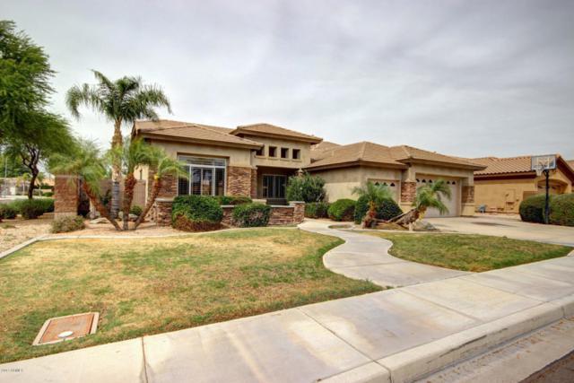 8644 W Mohawk Lane, Peoria, AZ 85382 (MLS #5596721) :: The Laughton Team