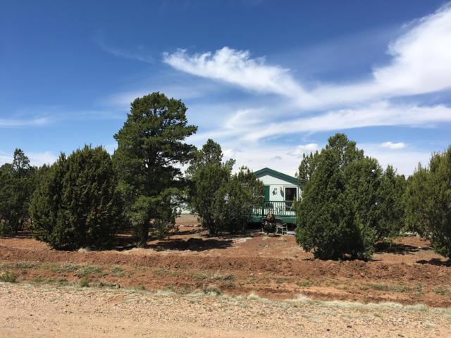 33 County Road 3205, Concho, AZ 85924 (MLS #5597824) :: Team Wilson Real Estate