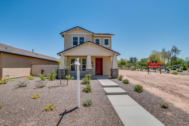 14771 W Alexandria Way, Surprise, AZ 85379 (MLS #5602785) :: Santizo Realty Group