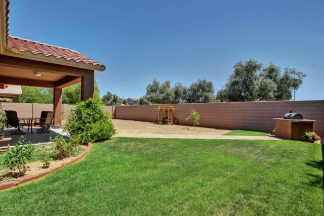 6915 N 87TH Drive, Glendale, AZ 85305 (MLS #5608336) :: The Everest Team at My Home Group