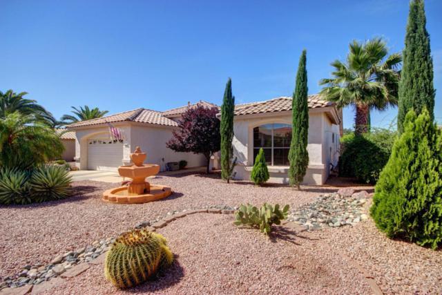 18079 W Ewers Drive, Surprise, AZ 85374 (MLS #5610671) :: Desert Home Premier
