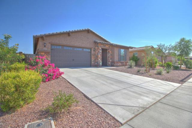 18372 W Southgate Avenue, Goodyear, AZ 85338 (MLS #5617471) :: Kortright Group - West USA Realty
