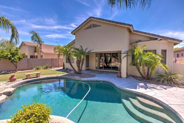 6131 S Nash Court, Chandler, AZ 85249 (MLS #5617762) :: Santizo Realty Group