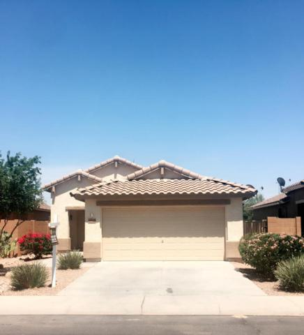 19337 N Ibiza Lane, Maricopa, AZ 85138 (MLS #5618276) :: Sibbach Team - Realty One Group