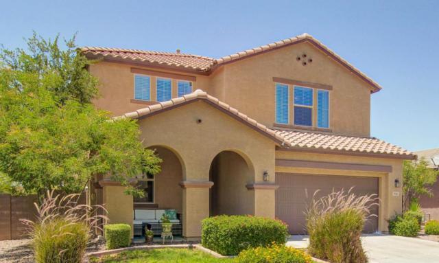 956 N Sunaire, Mesa, AZ 85205 (MLS #5619865) :: Occasio Realty