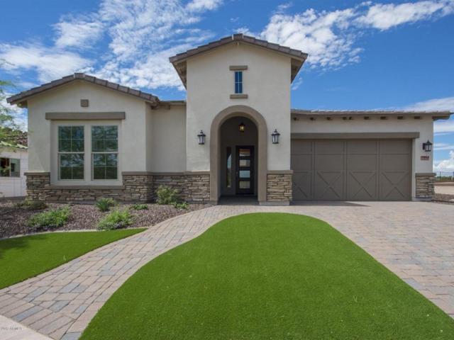 12433 W Gilia Way, Peoria, AZ 85383 (MLS #5619921) :: The Worth Group
