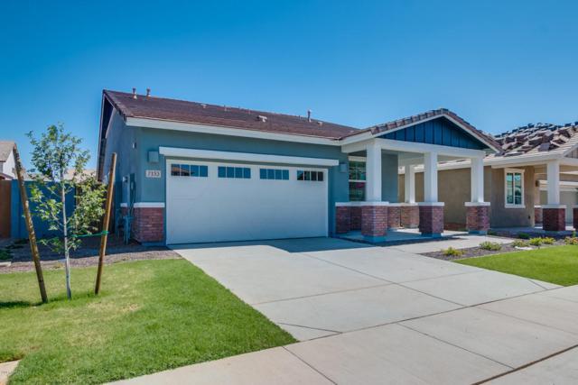 7133 E Onza Avenue, Mesa, AZ 85212 (MLS #5620288) :: The Bill and Cindy Flowers Team