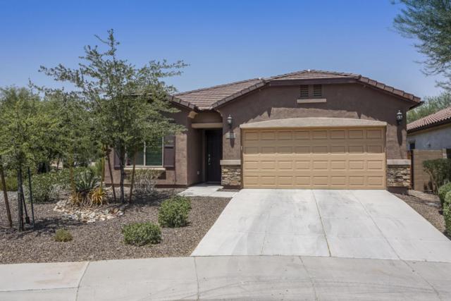 5440 W Yearling Road, Phoenix, AZ 85083 (MLS #5621701) :: The Laughton Team