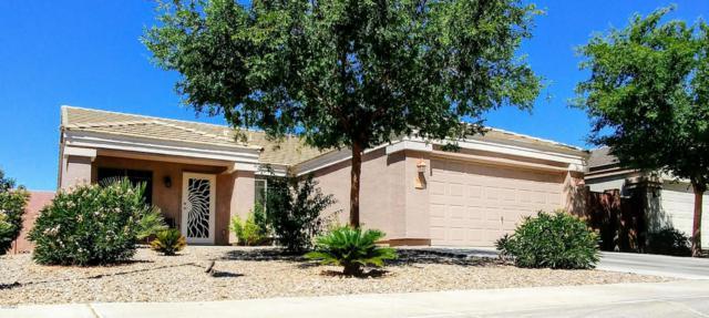 14506 N 128 TH Drive, El Mirage, AZ 85335 (MLS #5622719) :: Kelly Cook Real Estate Group