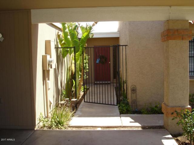 403 E Colgate Drive, Tempe, AZ 85283 (MLS #5623281) :: The Bill and Cindy Flowers Team