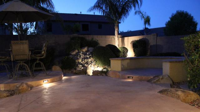 16448 W Adams Street, Goodyear, AZ 85338 (MLS #5623435) :: Kortright Group - West USA Realty