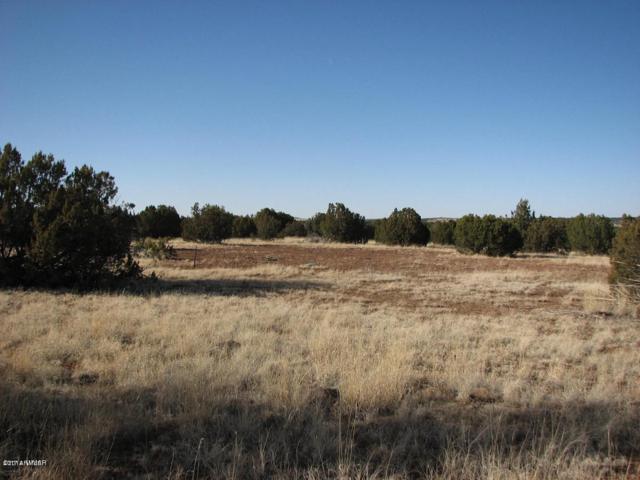 Lot 297 Chevelon Canyon Ranch #3, Overgaard, AZ 85933 (MLS #5624570) :: Riddle Realty Group - Keller Williams Arizona Realty