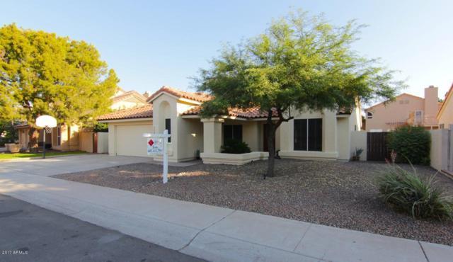 7008 W Tonto Drive, Glendale, AZ 85308 (MLS #5624837) :: Desert Home Premier