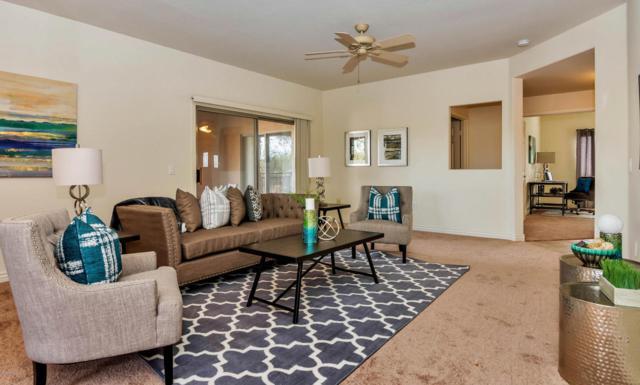 16801 N 94TH Street #1010, Scottsdale, AZ 85260 (MLS #5625269) :: Private Client Team