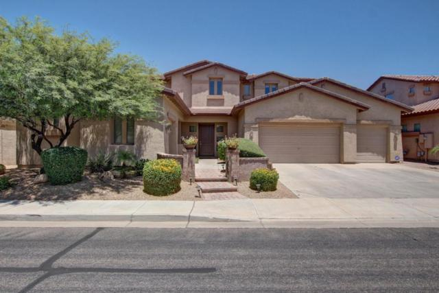 3898 E Libra Place, Chandler, AZ 85249 (MLS #5626315) :: Kortright Group - West USA Realty