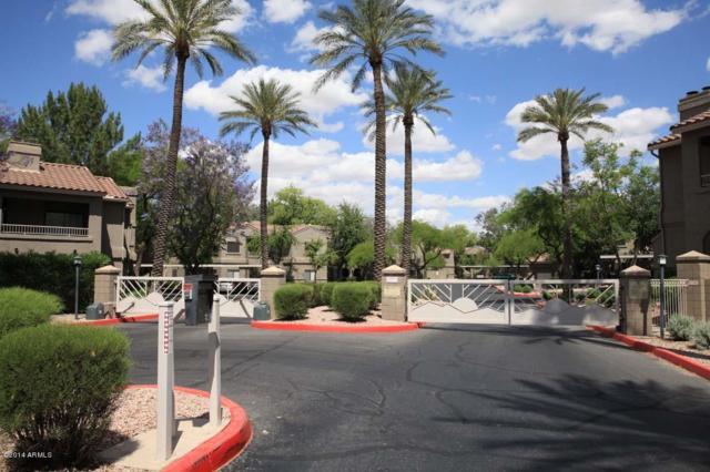 15050 N Thompson Peak Parkway #1042, Scottsdale, AZ 85260 (MLS #5629830) :: Yost Realty Group at RE/MAX Casa Grande