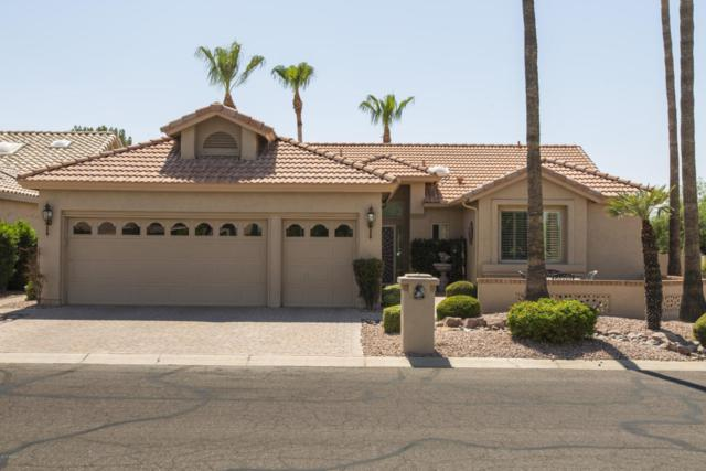 26002 S Ribbonwood Drive, Sun Lakes, AZ 85248 (MLS #5633007) :: RE/MAX Infinity