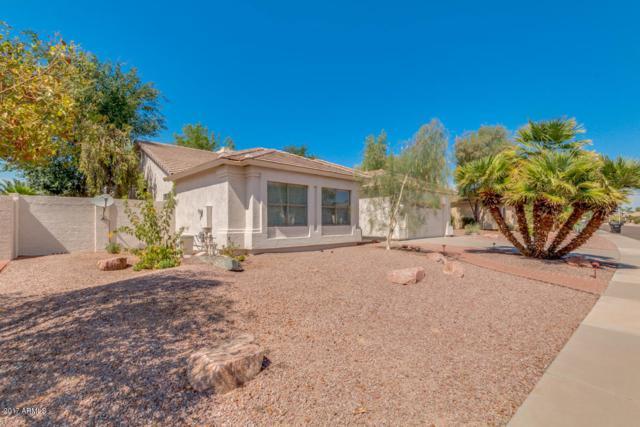 884 W Beechnut Drive, Chandler, AZ 85248 (MLS #5633186) :: Brett Tanner Home Selling Team