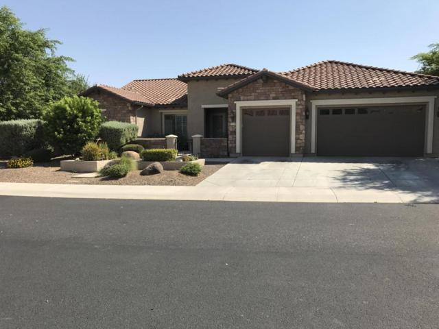 26504 W Runion Lane, Buckeye, AZ 85396 (MLS #5634144) :: Desert Home Premier