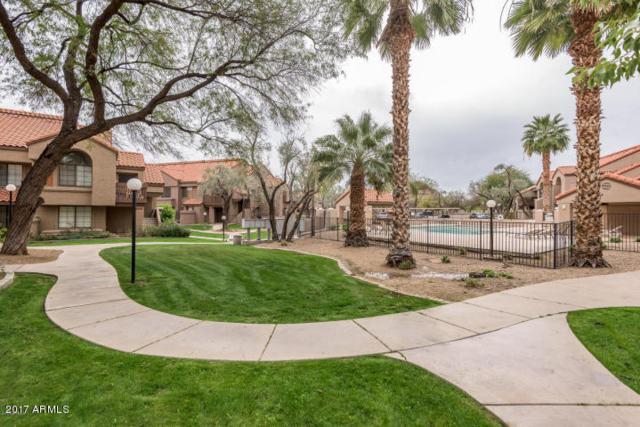 925 N College Avenue F122, Tempe, AZ 85281 (MLS #5636774) :: Santizo Realty Group