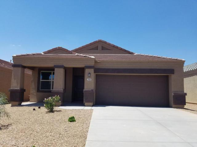 29100 N Star Sapphire Lane, San Tan Valley, AZ 85143 (MLS #5637101) :: The Pete Dijkstra Team