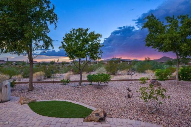 30148 N 129TH Glen, Peoria, AZ 85383 (MLS #5640601) :: The Worth Group