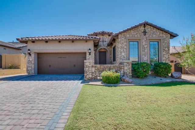 1645 N Red Cliff, Mesa, AZ 85207 (MLS #5642766) :: Desert Home Premier