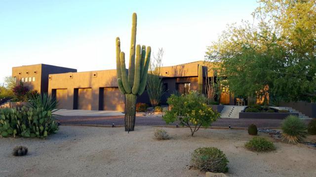 29211 N 64TH Street, Cave Creek, AZ 85331 (MLS #5642826) :: Occasio Realty