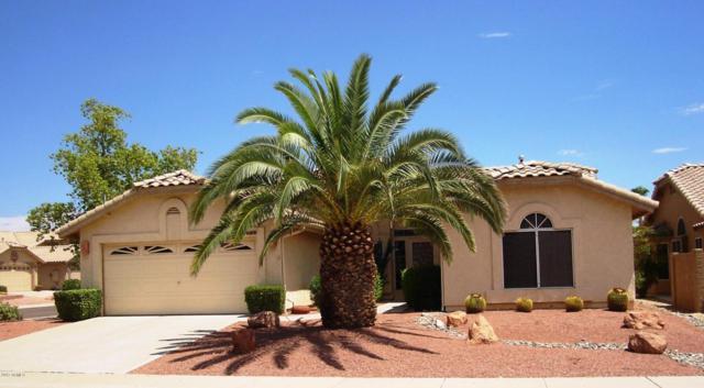 18817 N 89TH Lane, Peoria, AZ 85382 (MLS #5645674) :: Desert Home Premier