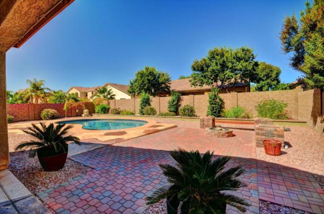 13002 W Campbell Avenue, Litchfield Park, AZ 85340 (MLS #5645952) :: Kortright Group - West USA Realty