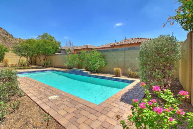 27653 N Higuera Drive, Peoria, AZ 85383 (MLS #5646179) :: The Laughton Team