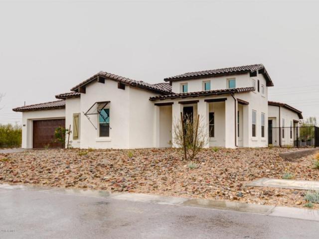 29615 N 55TH Place, Cave Creek, AZ 85331 (MLS #5646350) :: The Daniel Montez Real Estate Group