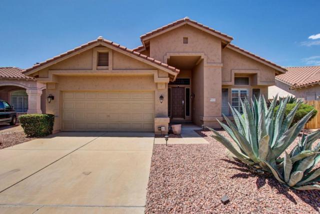 31014 N 44TH Place, Cave Creek, AZ 85331 (MLS #5646473) :: Cambridge Properties