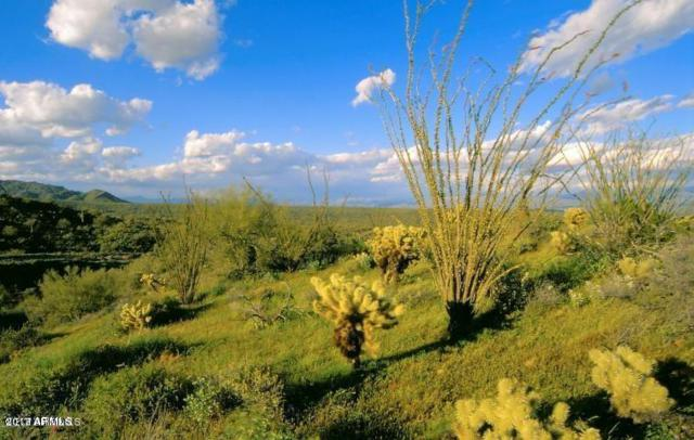 14121 E Paloma Court, Fountain Hills, AZ 85268 (MLS #5646656) :: The Daniel Montez Real Estate Group