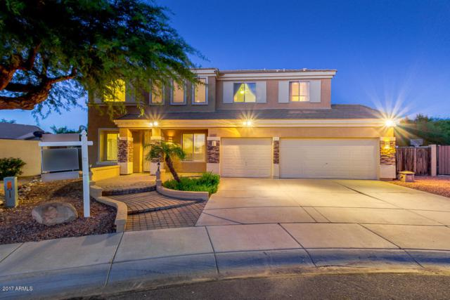 26423 N 73RD Drive, Peoria, AZ 85383 (MLS #5647533) :: Kelly Cook Real Estate Group