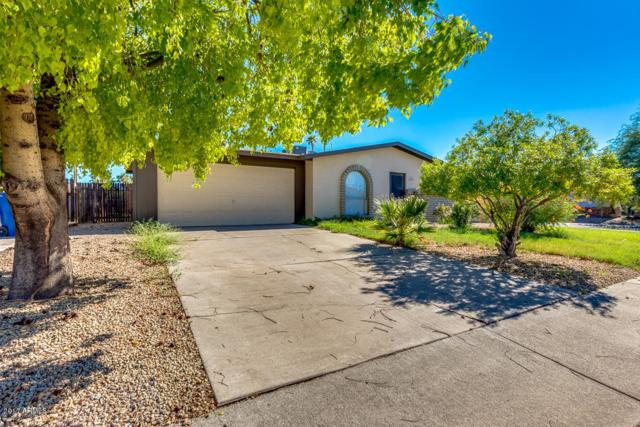 1237 W Manhatton Drive, Tempe, AZ 85282 (MLS #5647743) :: Kelly Cook Real Estate Group