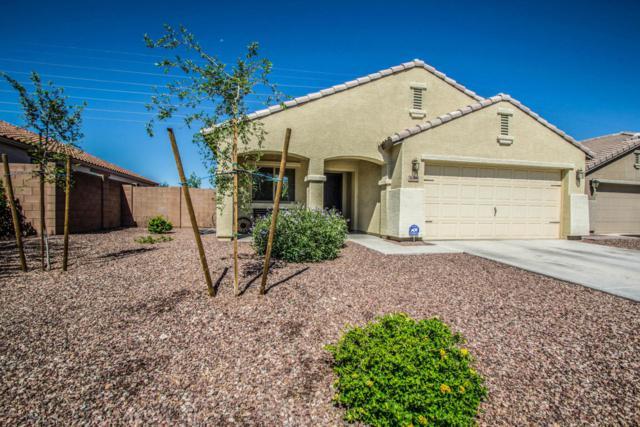 3668 S 186TH Lane, Goodyear, AZ 85338 (MLS #5647765) :: Kelly Cook Real Estate Group