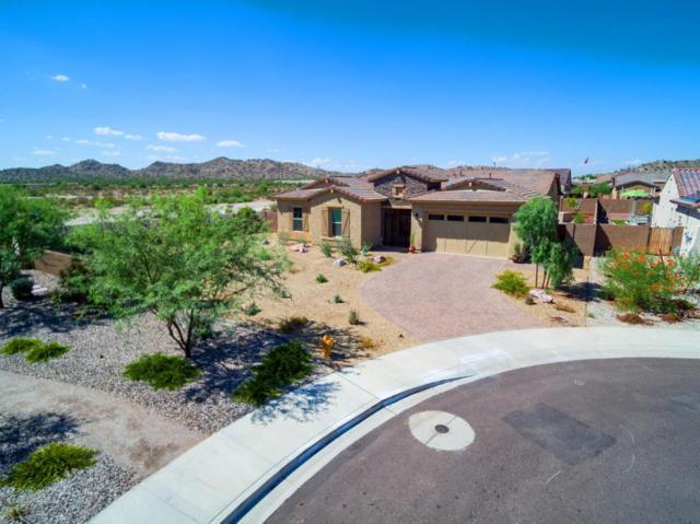 18450 W Verbena Drive, Goodyear, AZ 85338 (MLS #5647810) :: Kelly Cook Real Estate Group