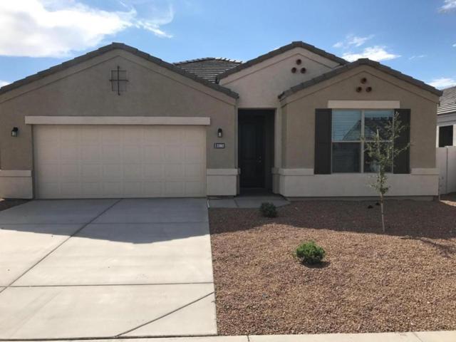 32882 N Jamie Lane, Queen Creek, AZ 85142 (MLS #5649101) :: Brett Tanner Home Selling Team