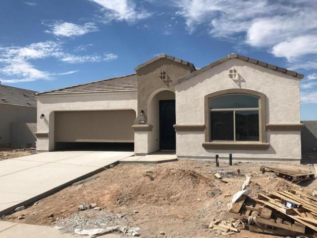 4080 W Goldmine Mountain Drive, Queen Creek, AZ 85142 (MLS #5649113) :: Brett Tanner Home Selling Team