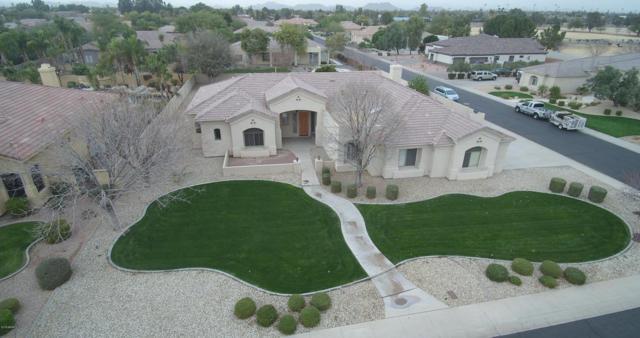6420 W Willow Avenue, Glendale, AZ 85304 (MLS #5649259) :: Occasio Realty