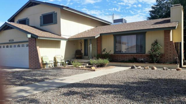 6029 W Mary Jane Lane, Glendale, AZ 85306 (MLS #5649260) :: The AZ Performance Realty Team