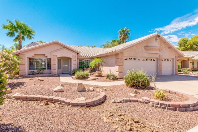 8627 W Meadow Drive, Peoria, AZ 85382 (MLS #5649573) :: Occasio Realty
