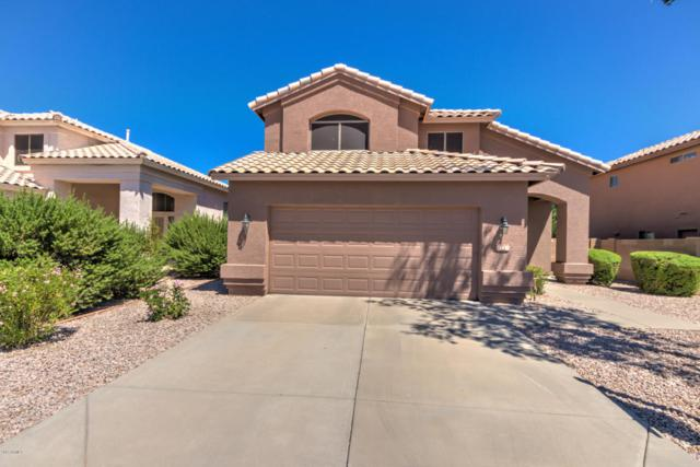 13437 S 47TH Street, Phoenix, AZ 85044 (MLS #5649692) :: Group 46:10